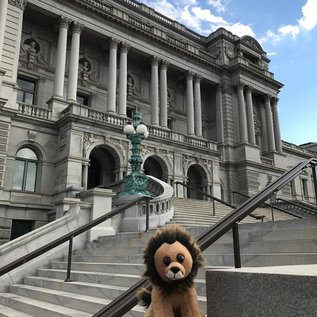 Our new little friend poses in front of this beautiful building.